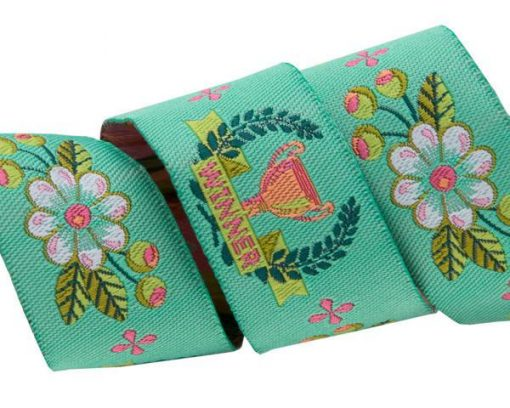 """(Tula Pink Ribbons) Slow and Steady, The Winner In Mint 7/8"""" 1"""